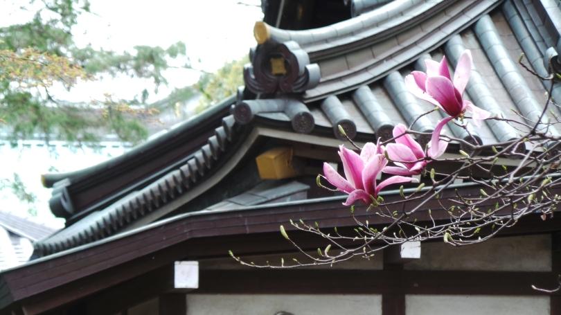 Temple Myohoji entrée