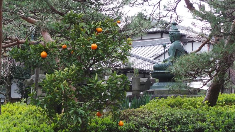 Temple Shinsei ji buddha