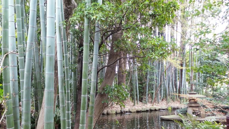 Temple Shinsei ji forêt de bamboo