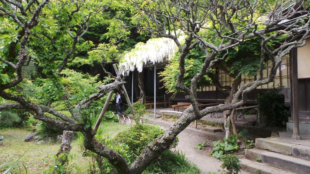 Eisho-ji, un temple 100% féminin à Kamakura