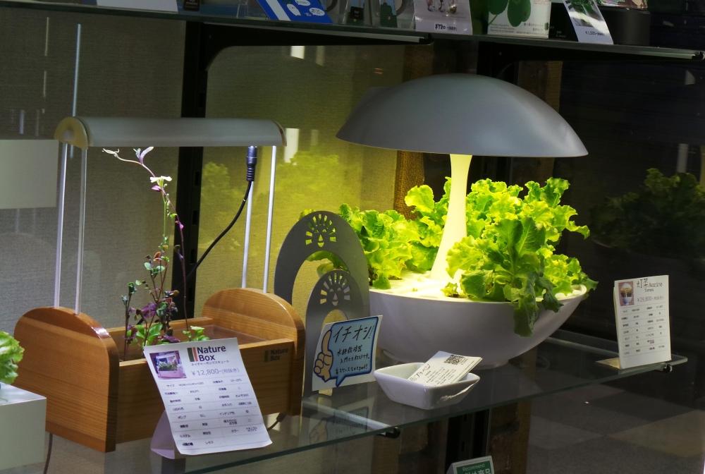 Boutique design Nakano Broadway, un centre commercial insolite