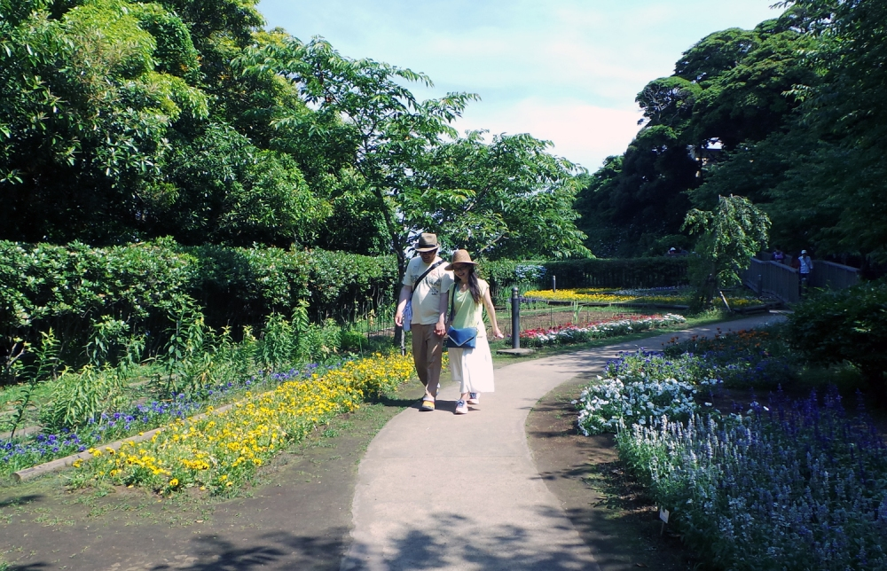 Jardins d'Enoshima, près de Tokyo, Japon.