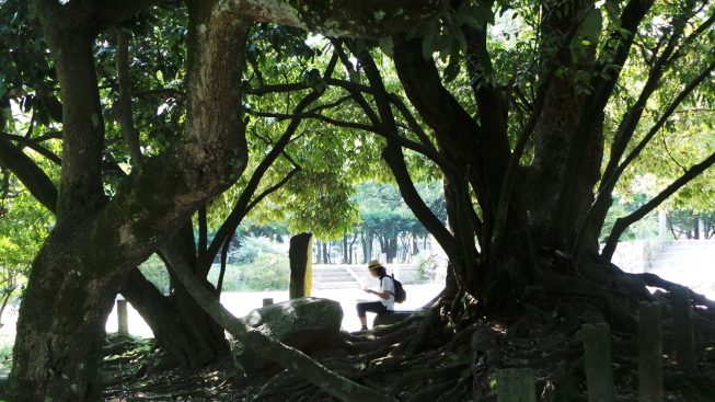 Jardin du temple Kanzeonji à Dazaifu, Fukuoka