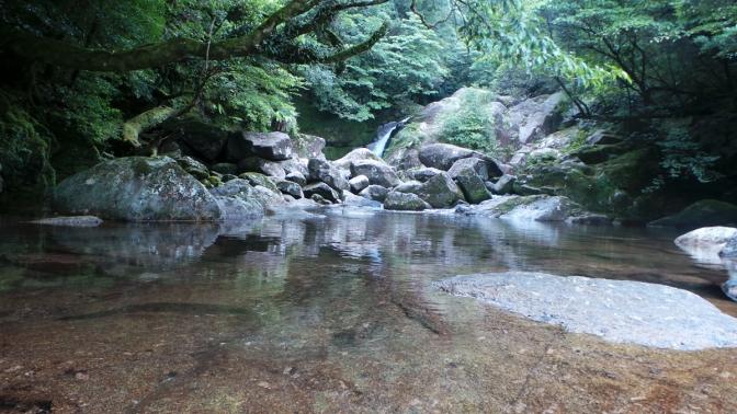 La cascade de Shiratani sur l'île de Yakushima, Japon