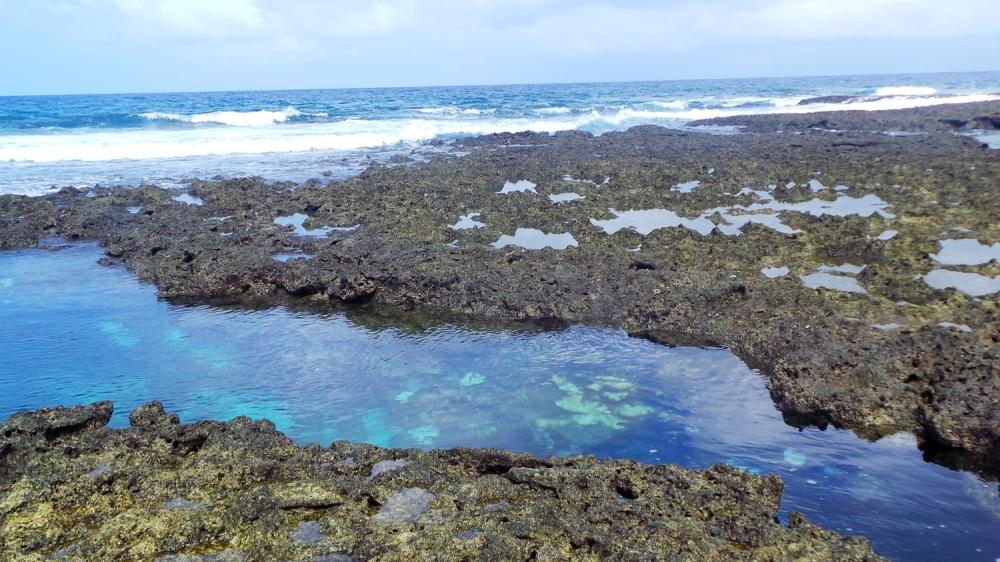 Piscines naturelles de poissons tropicaux sur l'île de Kumejima, Okinawa