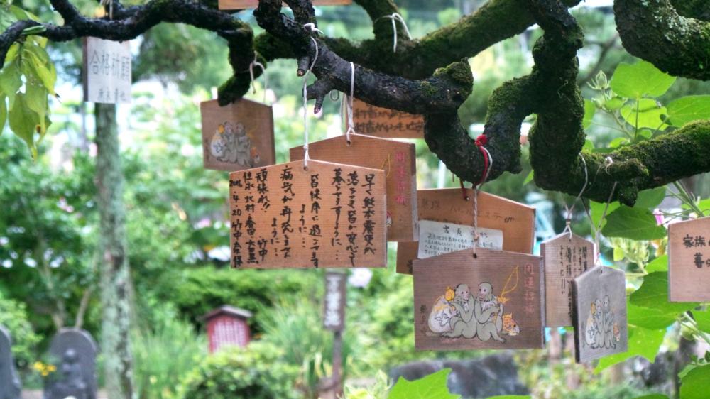 Visite d'Asukadera, premier temple bouddhiste du Japon, Kansai.