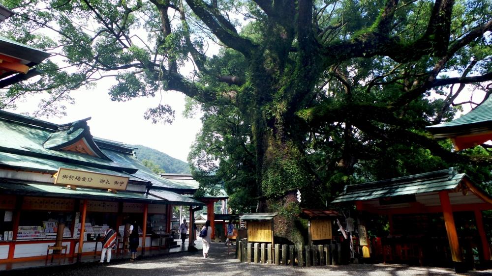 Visite du sanctuaire Kumano Nachi Taisha, Kansai, Japon.