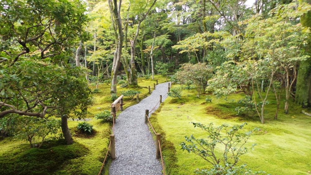 Jardin de mousse Murin-an à Kyoto, Japon.