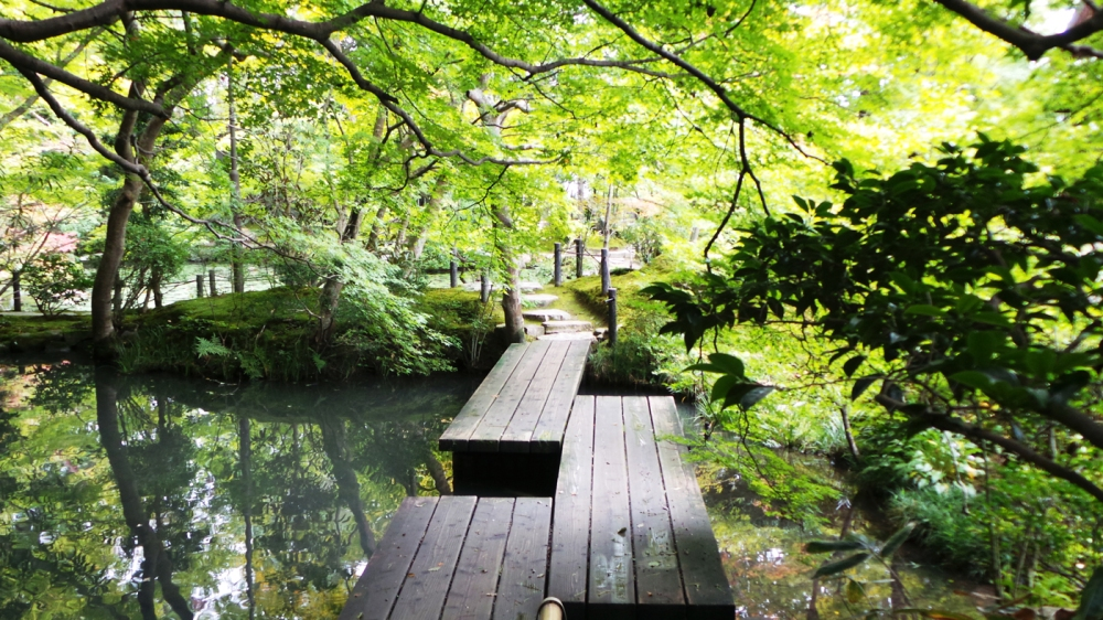 Magnifique jardin Riko-gyen, Kyoto, Japon.