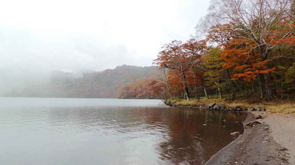 Koyo au lac Onuma, mont Akagi, près de Tokyo, préfecture de Gunma, Japon.