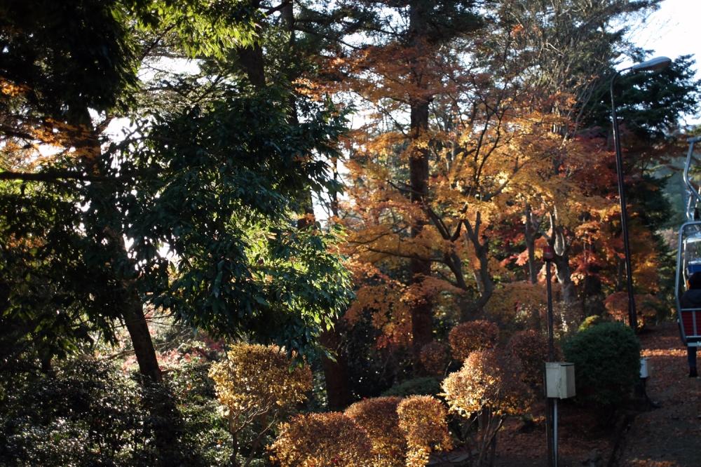 Téléphérique automne mont Takao, Tokyo, Japon.