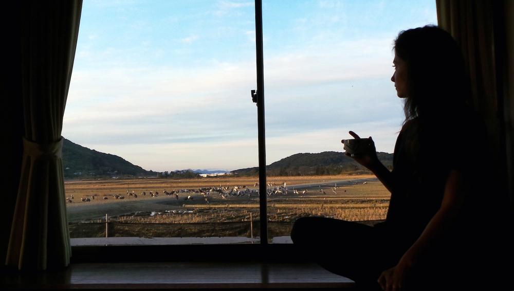Ryokan pour observer les grues à Izumi, Kyushu, Japon.