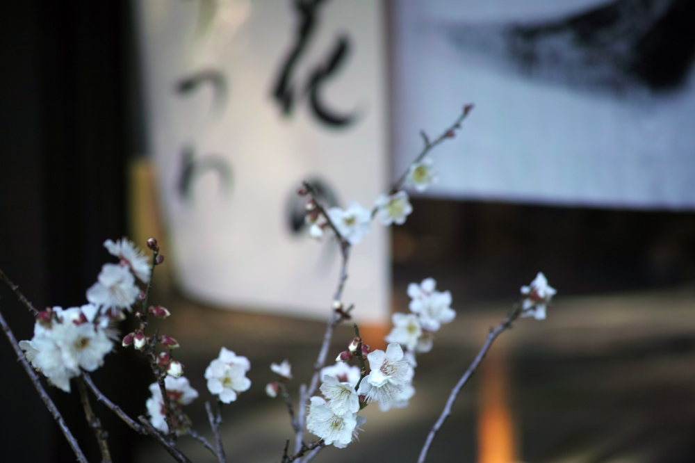 Poterie TAMEI KAZUYOSHI près du sanctuaire Okuni Jinja, Hamamatsu, préfecture de Shizuoka, Japon.
