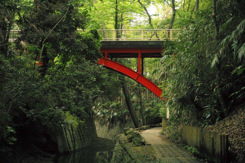Pont vermillon dans la vallée de Todoroki dans le quartier de Setagaya à Tokyo
