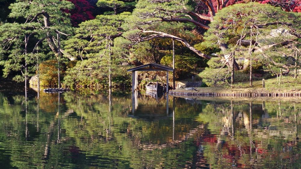 Se promener dans les couleurs de l'automne à Tokyo, Japon
