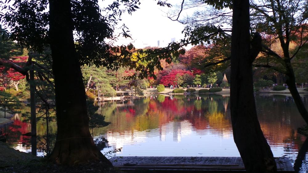 Jardin où profiter des couleurs de l'automne à Tokyo, Japon