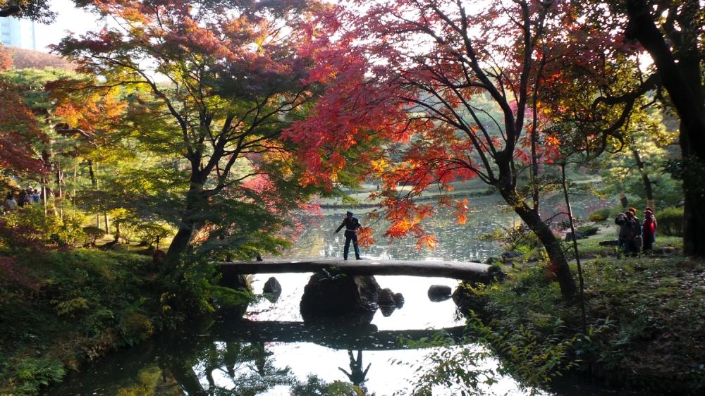 Pont de pierre dans le joli jardin Rikugi en de l'époque Edo, Tokyo